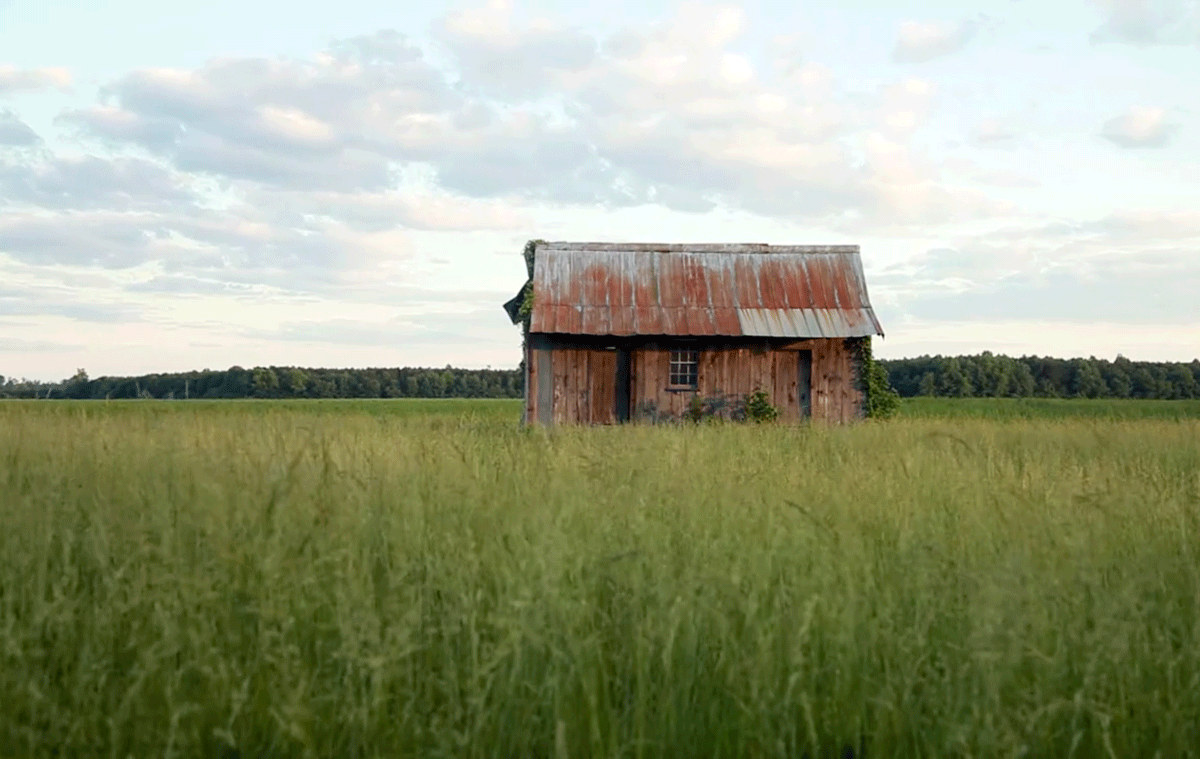 Barn sitting in a field with high green grasses under a cloudy, blue sky